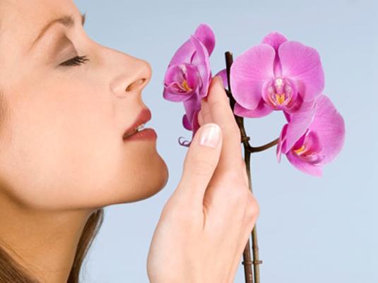 Полезные советы при выборе парфюмерии
